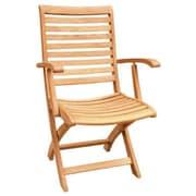 HiTeak Furniture Folding Dining Arm Chair
