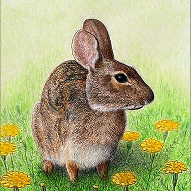 Betsy Drake Interiors Rabbit Coaster (Set of 4)