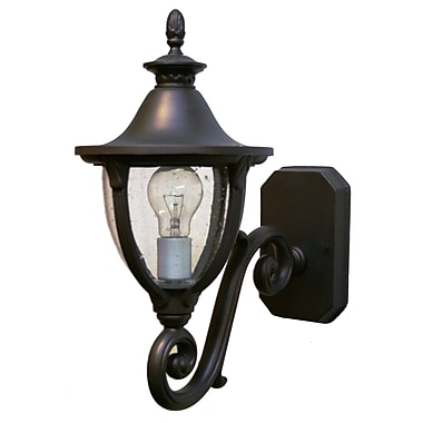 Melissa Tuscany 1-Light Outdoor Sconce; Aged Silver