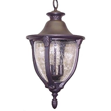 Melissa Tuscany 3 Light Outdoor Hanging Lantern; Black