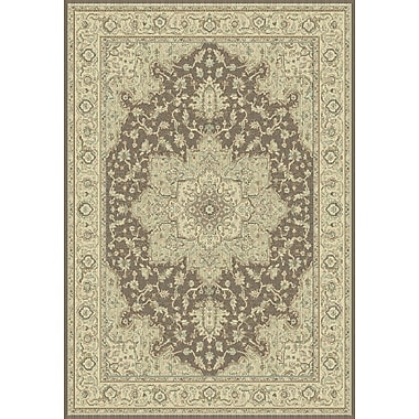 Dynamic Rugs Imperial Brown/Cream Area Rug; 2' x 3'11''