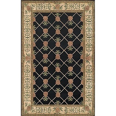American Home Rug Co. Cape May Black / Ivory Area Rug; 8'6'' x 11'6''