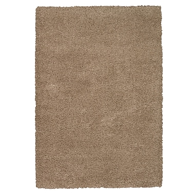 Nourison Amore Oyster Area Rug; 3'11'' x 5'11''