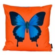 lava Center Of Attention Pillow