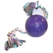 Jolly Pets Romp And Roll Ball; Purple