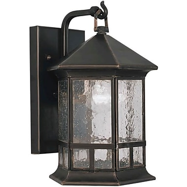 Forte Lighting 1-Light Outdoor Wall Lantern; 17.5'' H x 12.5'' W / Rustic Sienna / Umber Linen