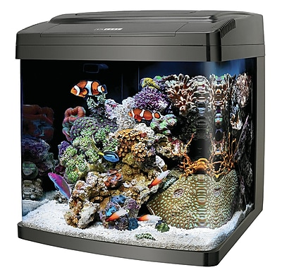 Coralife Biocube 14 Gallon Aquarium Kit