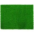 Everlast Turf Diamond Pro Spring 120'' x 90'' Synthetic Lawn Grass Turf