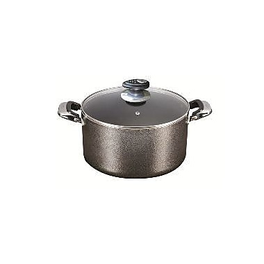 Danico Imperial Stock Pot with Lid; 2-qt.