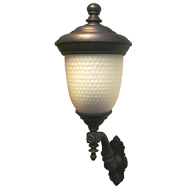 Melissa Tuscany 4 Light Outdoor Sconce; Aged Silver