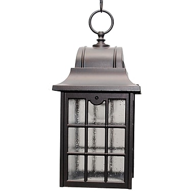 Melissa 600 Series 1-Light Outdoor Hanging Lantern; Black