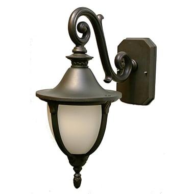 Melissa Tuscany 1 Light Outdoor Wall Lantern; Aged Silver