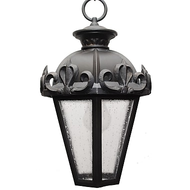 Melissa Parisian Elegance 1 Light Outdoor Hanging Lantern; Old Bronze