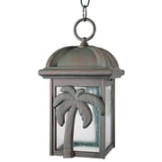 Melissa Americana Palm Tree Series 1 Light 12'' Hanging Lantern; Black