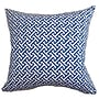 The Pillow Collection Quentin Cotton Pillow; Blueberry
