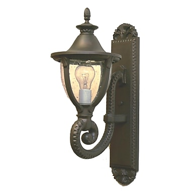 Melissa Tuscany 1-Light Outdoor Wall lantern; Architectural Bronze