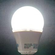 Queens of Christmas 10W LED Light Bulb; Daylight (6000K)