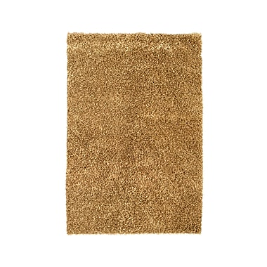 Noble House Sheen Brown Rug; 4' x 6'