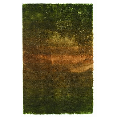 Noble House Jewel Green/Rust Rug; 4' x 6'