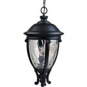 Maxim Lighting Camden VX 3 Light Outdoor Hanging Lantern; Black