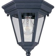Maxim Lighting Wagner 1 - Light Outdoor Ceiling Mount; Empire Bronze