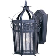 Maxim Lighting Cathedral 1-Light Outdoor Wall Lantern