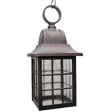 Melissa 600 Series 1 Light Outdoor Hanging Lantern; Aged Silver