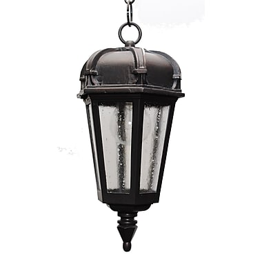 Melissa Kiss Series 1 Light Outdoor Hanging Lantern; Black