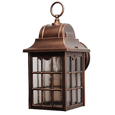Melissa 600 Series 1-Light Outdoor Wall lantern; Aged Silver