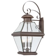 Quoizel Rutledge Outdoor Wall Lantern; Large