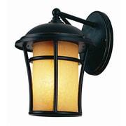 TransGlobe Lighting Outdoor 1 Light Wall Lantern; 12'' H x 8'' W x 9.75'' D