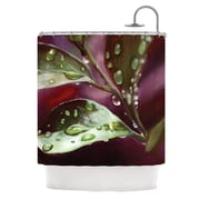 KESS InHouse April Showers Shower Curtain