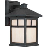 Forte Lighting 1 Light Wall Lantern; Black / 14'' H x 8'' W x 9'' D/Incandescent