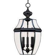 Maxim Lighting South Park 3 Light Outdoor Hanging Lantern; Black