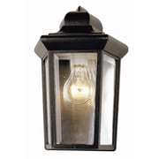 TransGlobe Lighting Outdoor 1 Light Wall Lantern; White