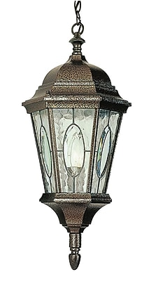TransGlobe Lighting 1 Light Outdoor Hanging Lantern; Brown WYF078275800041