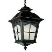 TransGlobe Lighting 1 Light Outdoor Hanging Lantern; 23.75'' H x 13'' W