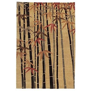 Artisan Carpets Chic & Modern Brown Rug; 9' x 12'