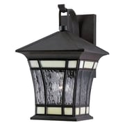 Westinghouse Lighting Riverbend Exterior 1 Light Water Glass Wall Lantern; 14''H x 9''W x 9.75''D