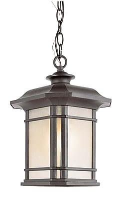 TransGlobe Lighting Corner Windows 1 Light Outdoor Hanging Lantern; Black WYF078275800585