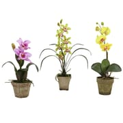 Nearly Natural Potted Orchid Mix (Set of 3); Lavender/Gold/Yellow