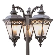 TransGlobe Lighting Outdoor 9 Light 80.75'' Post Light; Rust