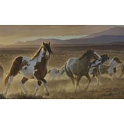 York Wallcoverings Portfolio II Desert Horse with Painted Ponies Wall Mural