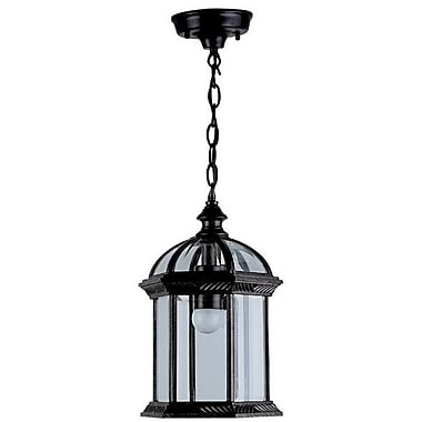 DVI Hexagon 1 Light Outdoor Hanging Lantern; Black