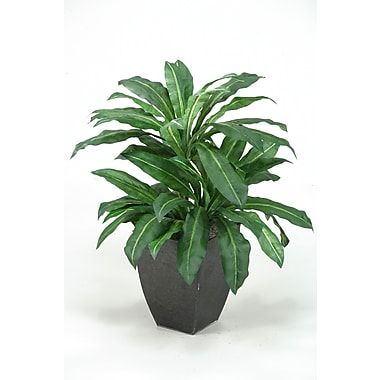 D & W Silks Birdnest Palm Floor Plant in Pot