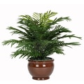 House of Silk Flowers Artificial Parlor Fern Desk Top Plant in Pot; Brown