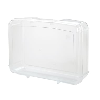 Staples® Clear Plastic Snap Case, Small