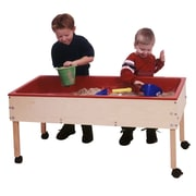 Steffy Toddler Sand and Water Table; With Top