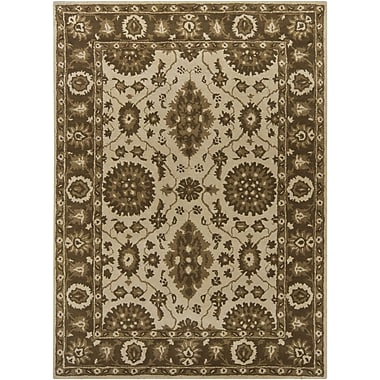 Chandra INT Ivory/Brown Area Rug; 5' x 7'6''