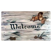 Custom Printed Rugs Squirrels and Pine Cones Doormat